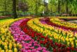Die Gärten der Liebe – Teil 2